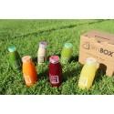 JuiceBOX – Cleanse Detoks Paketi(6 İçecek)
